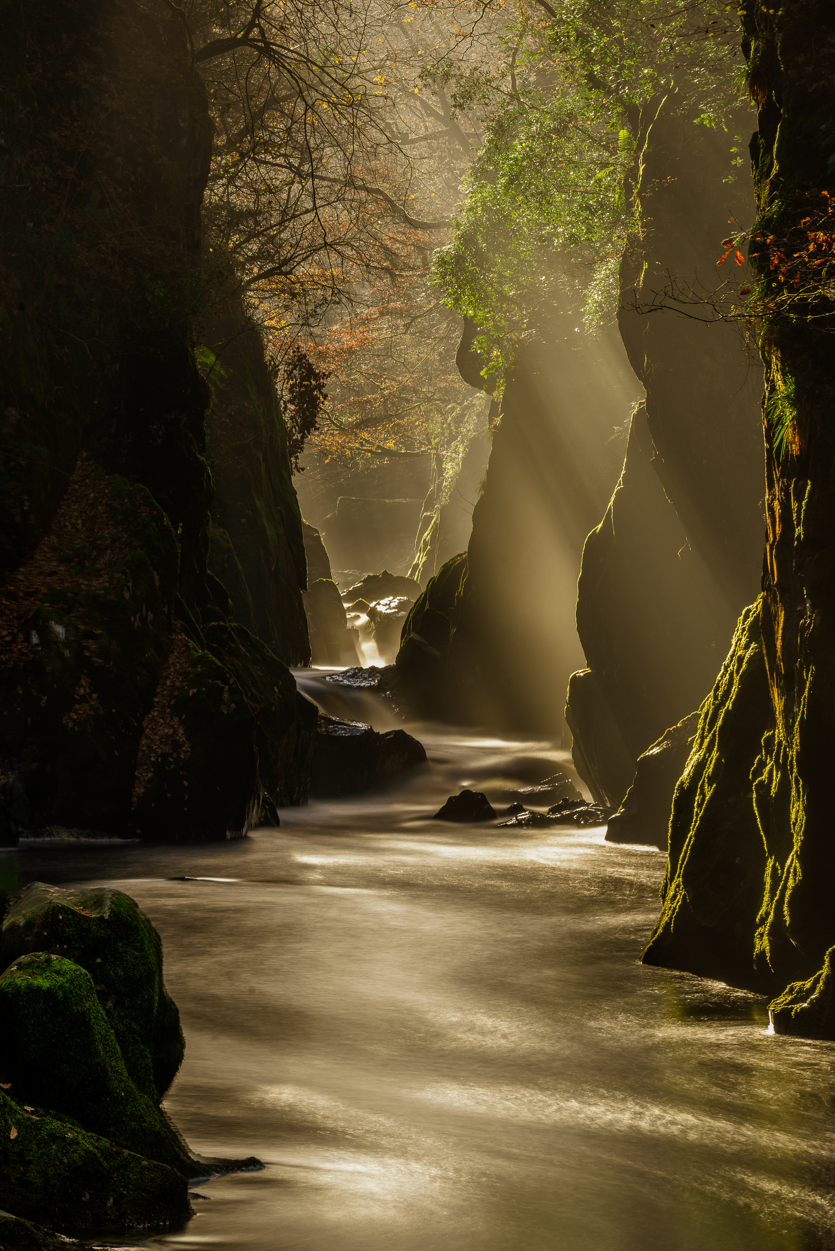 fairy glen 3 (1 of 1).jpg