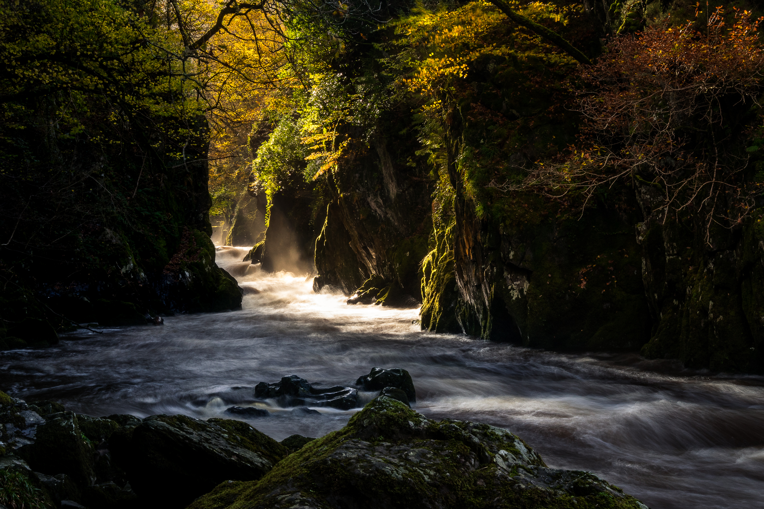 fairy glen (1 of 1).jpg