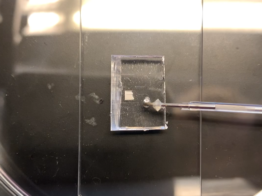 Micro-fluidic chip used for diffraction sensing.