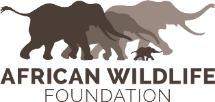 African Wildlife Foundation.png