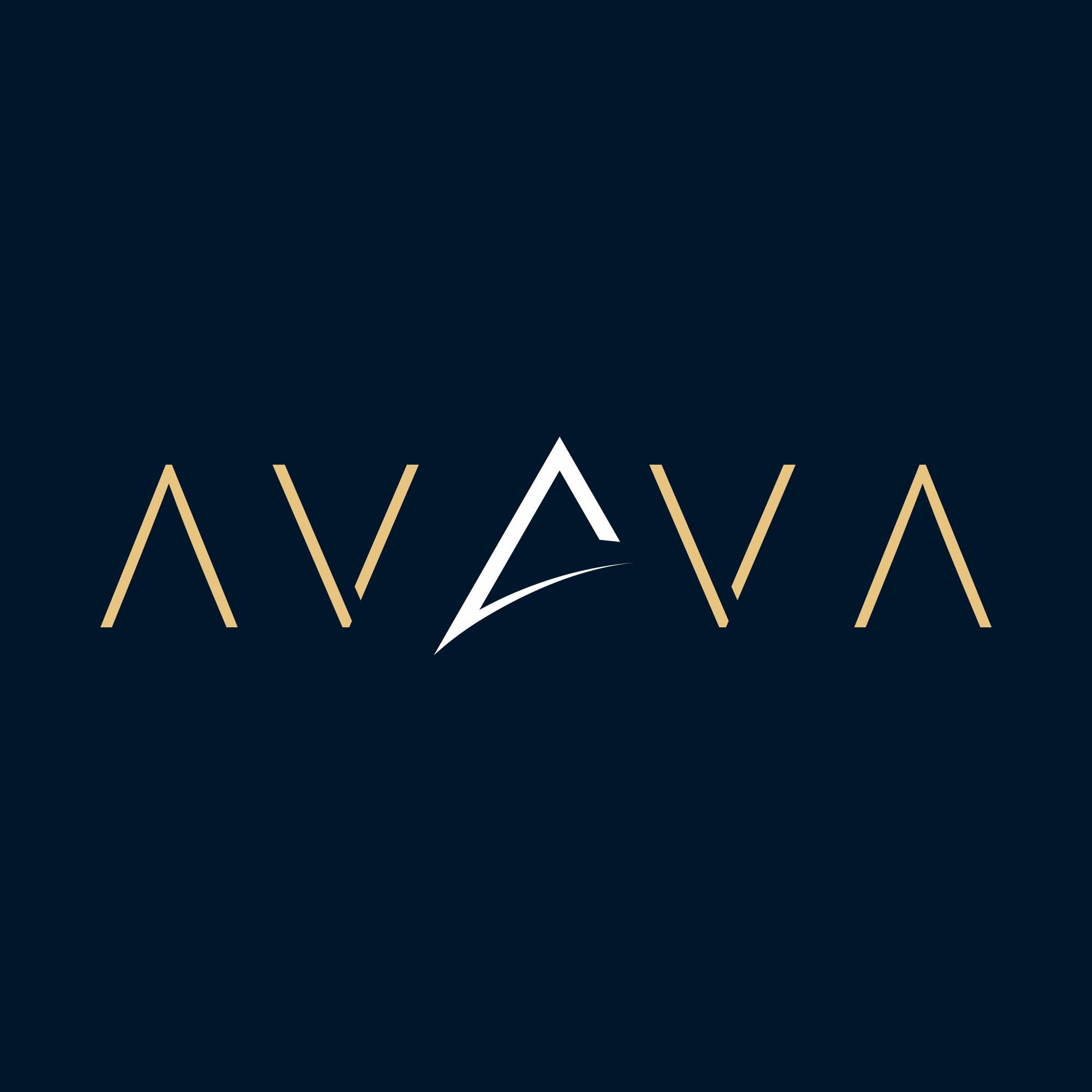 AVAVA (3).png