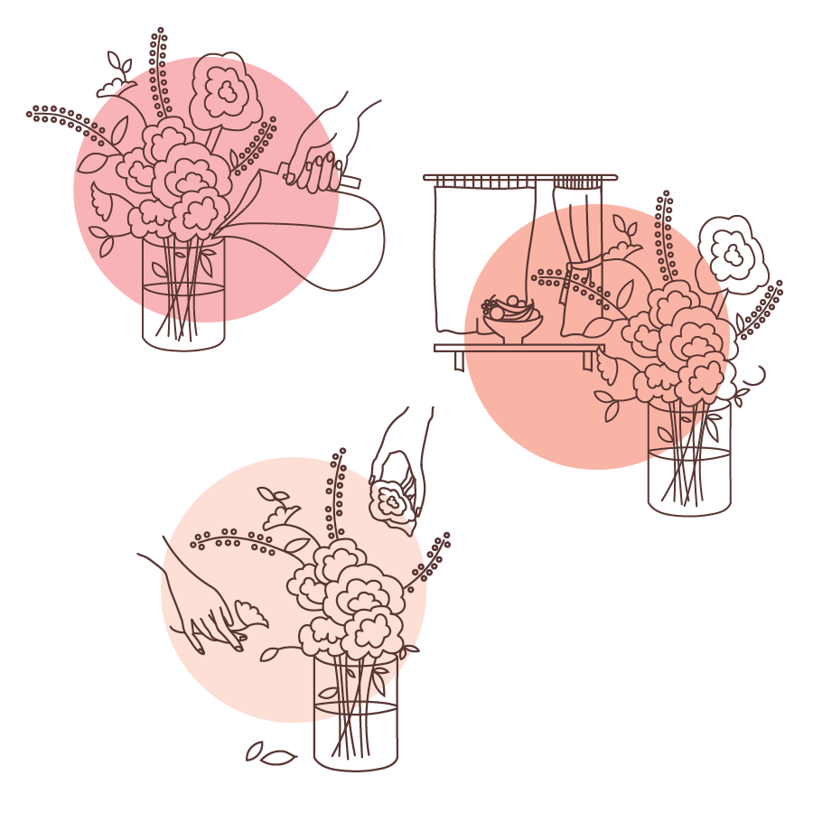 Bouquet care instructional illustrations