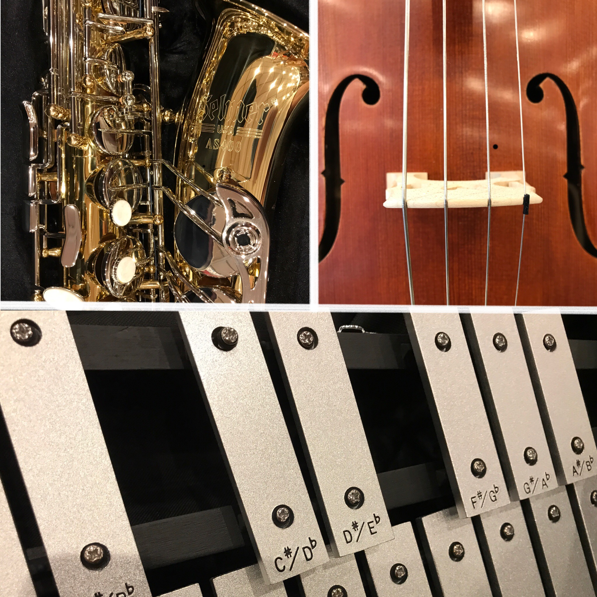Rent Band and Orchestra Instruments Online at JW Music!