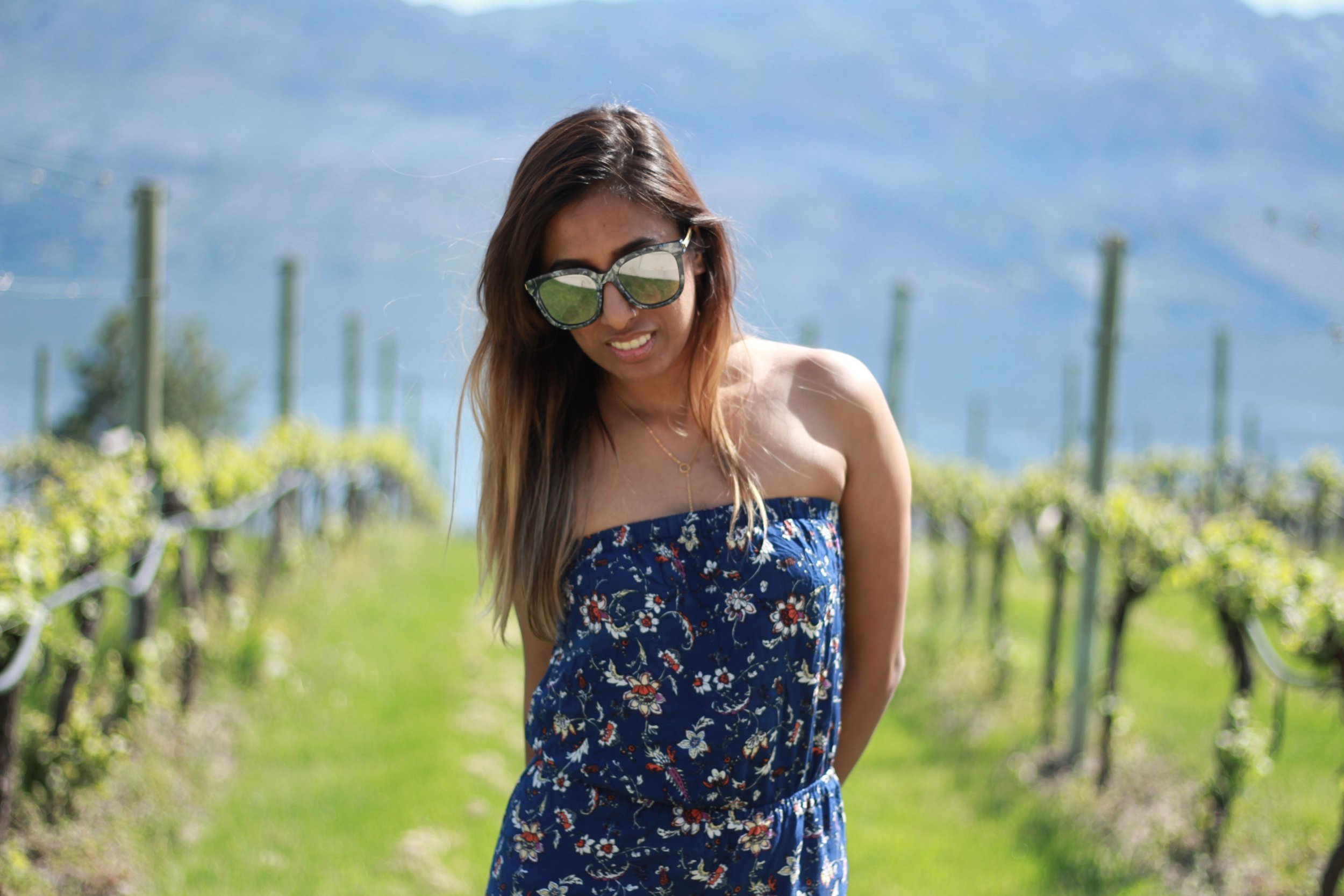 Mission Hill vineyard
