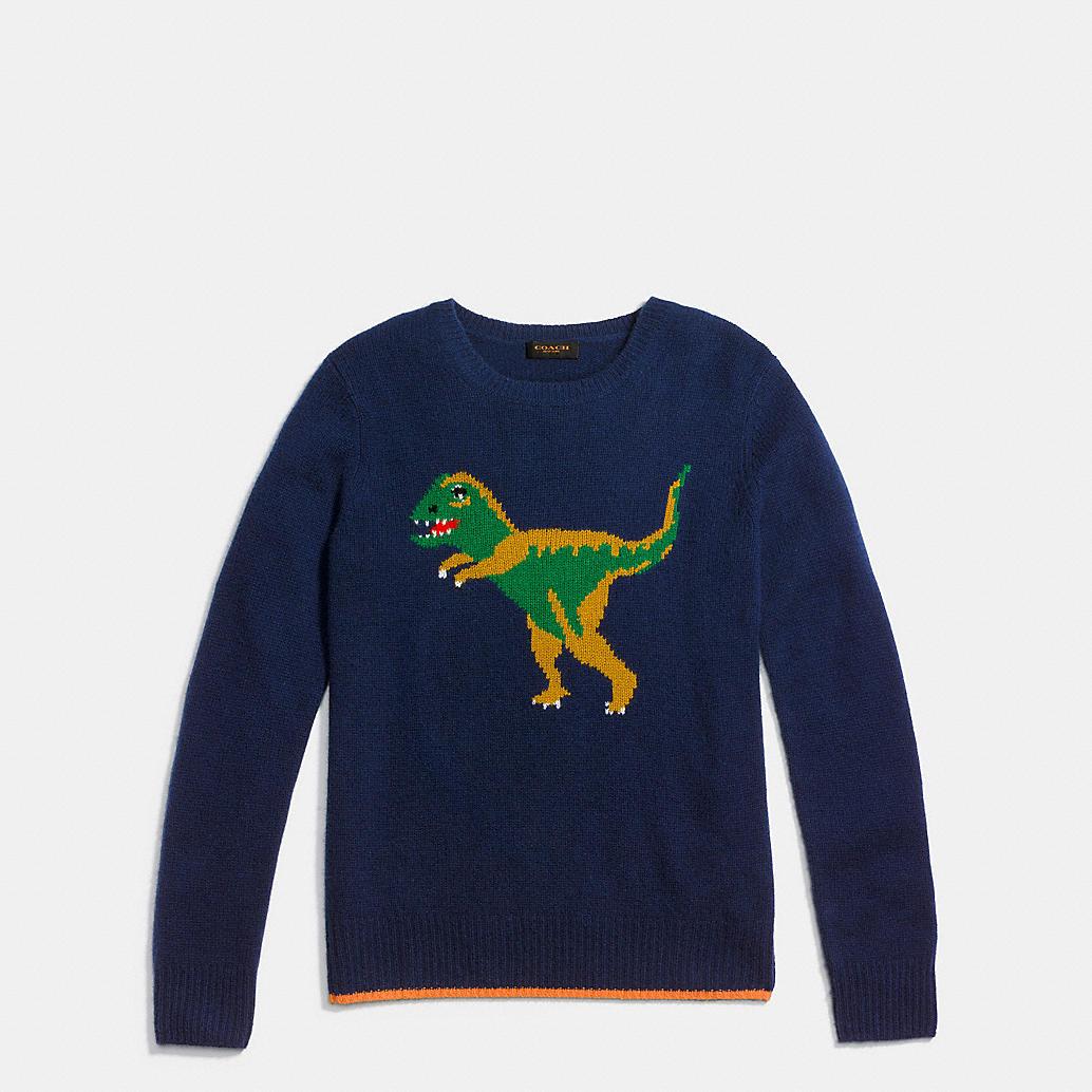 Coach Dinosaur Sweater