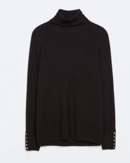 Zara Turtleneck Sweater