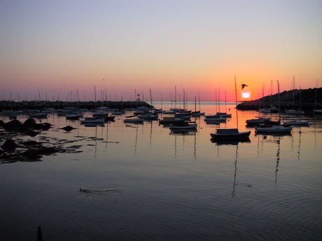 harbor in sunset