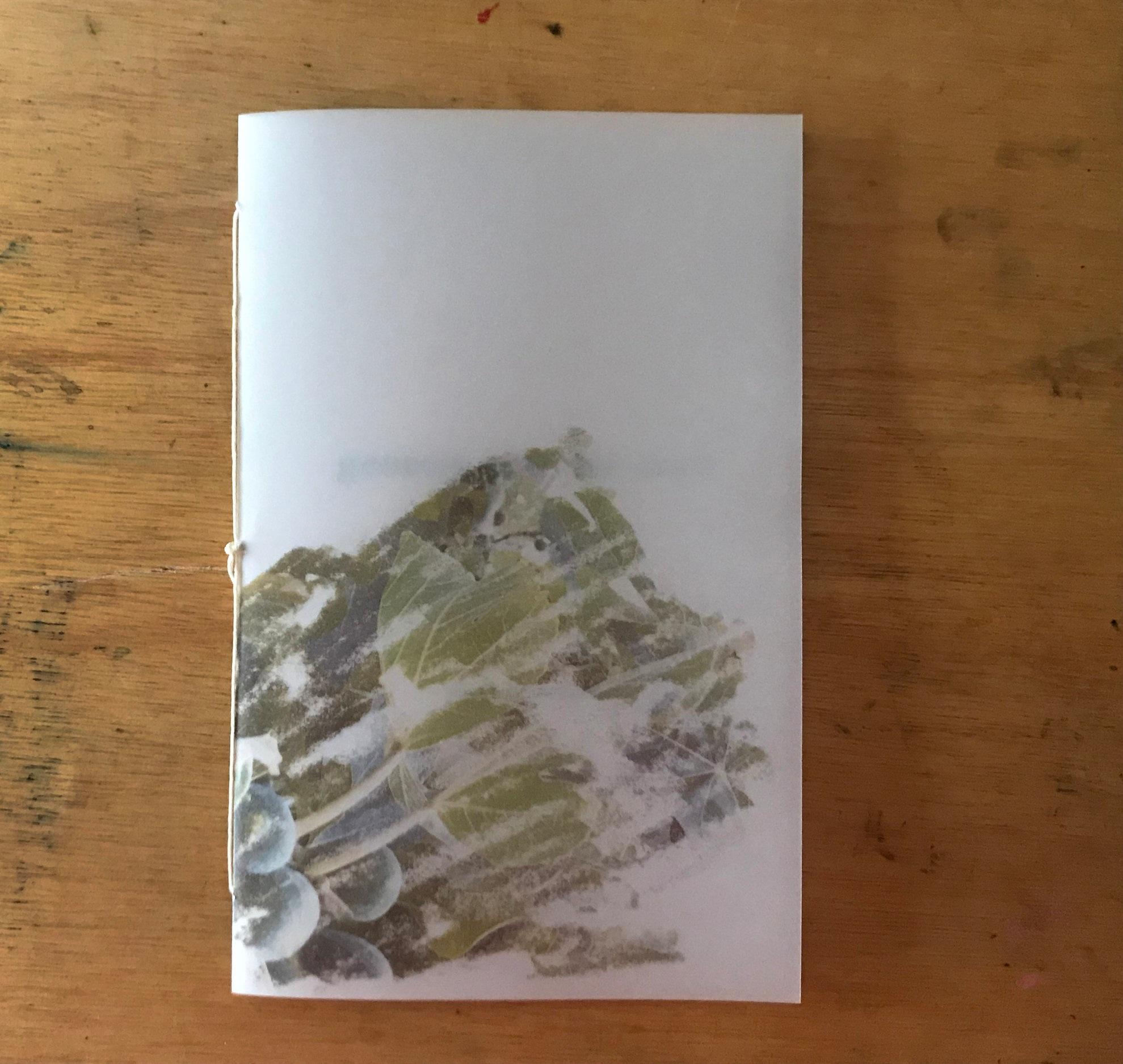 19+BOOK+genesis+1.jpg