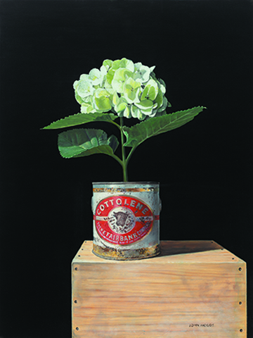 Cottolene Hydrangea  - oil on panel