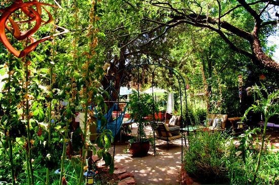 Chocolatree // Sedona, AZ
