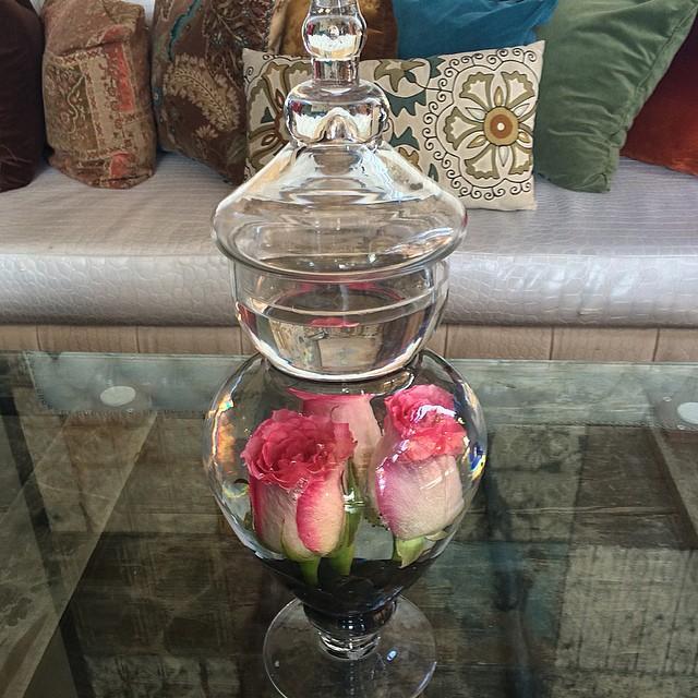 Apothecary Rose #saintfelixhollywood #rose #pink #apothecaryjar #apothecaryrose #hollywood #losangeles #junebloomfloral