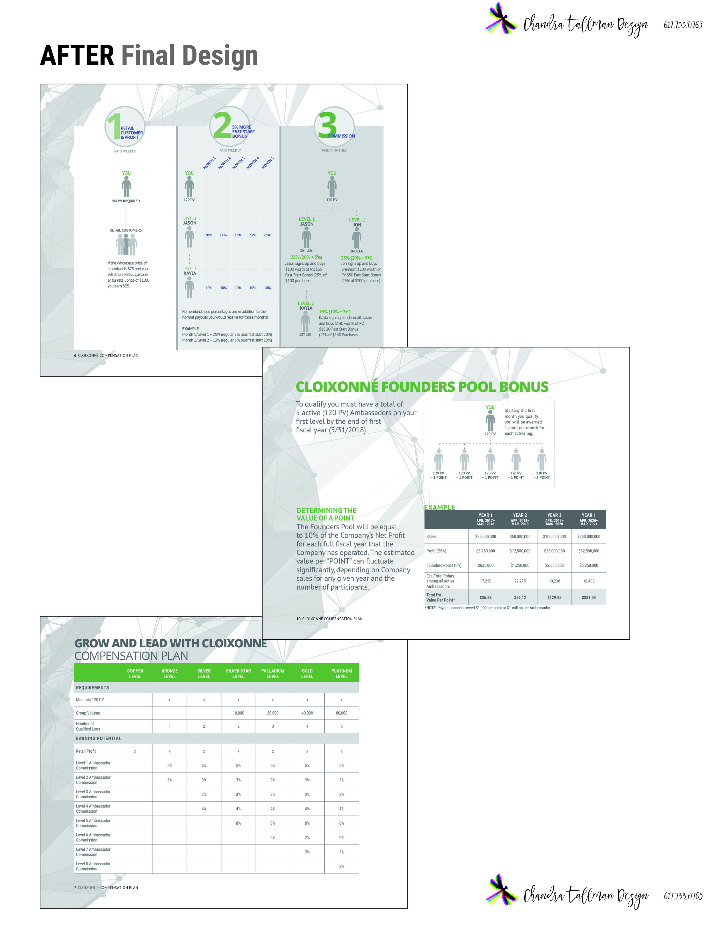 A few of the infographics pages in the final compensation plan design