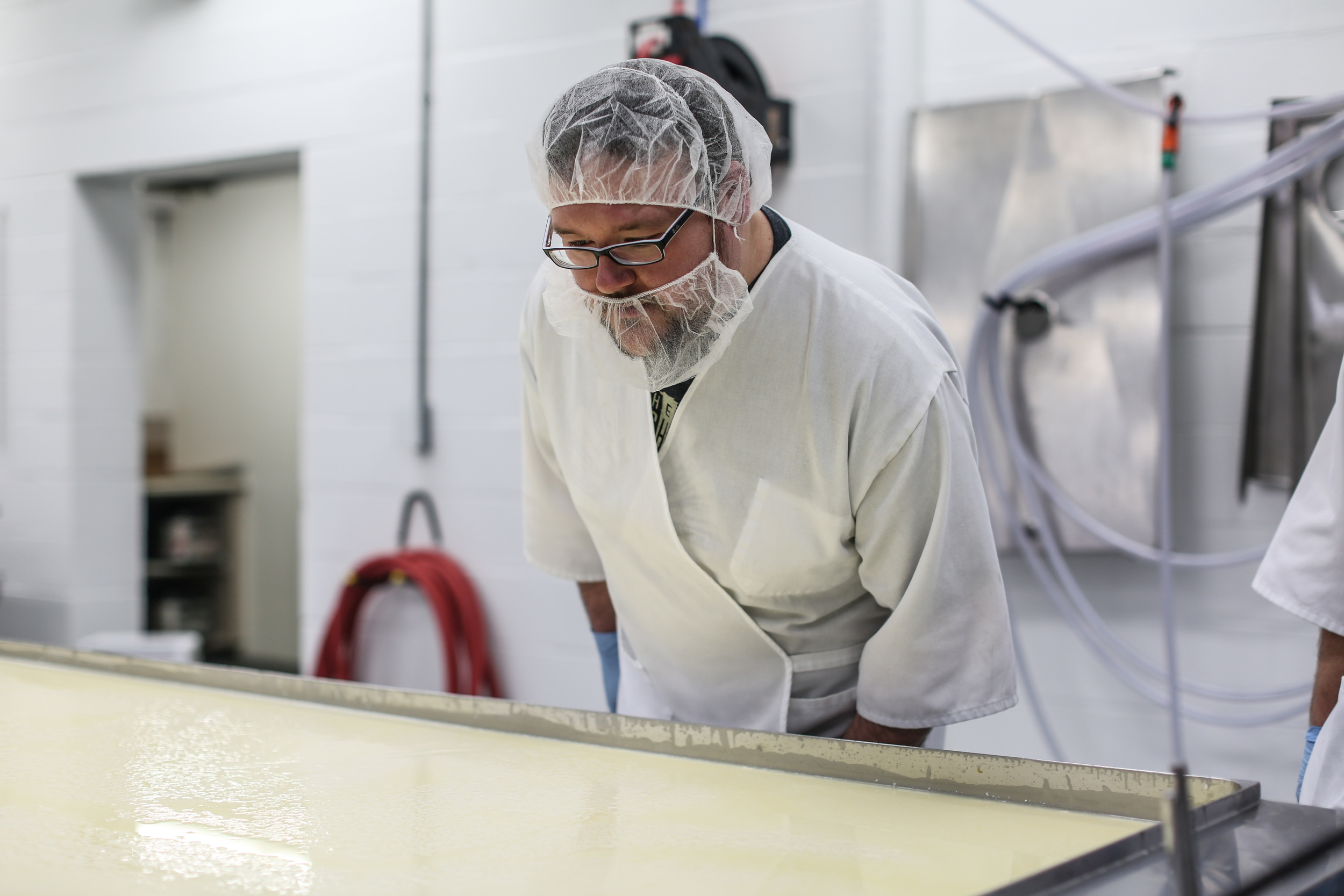 Examining the milk as curds begin to form
