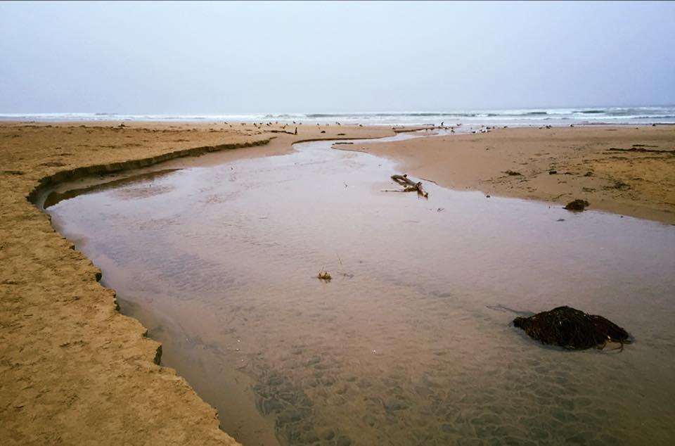 Pismo Beach. PC: Markham