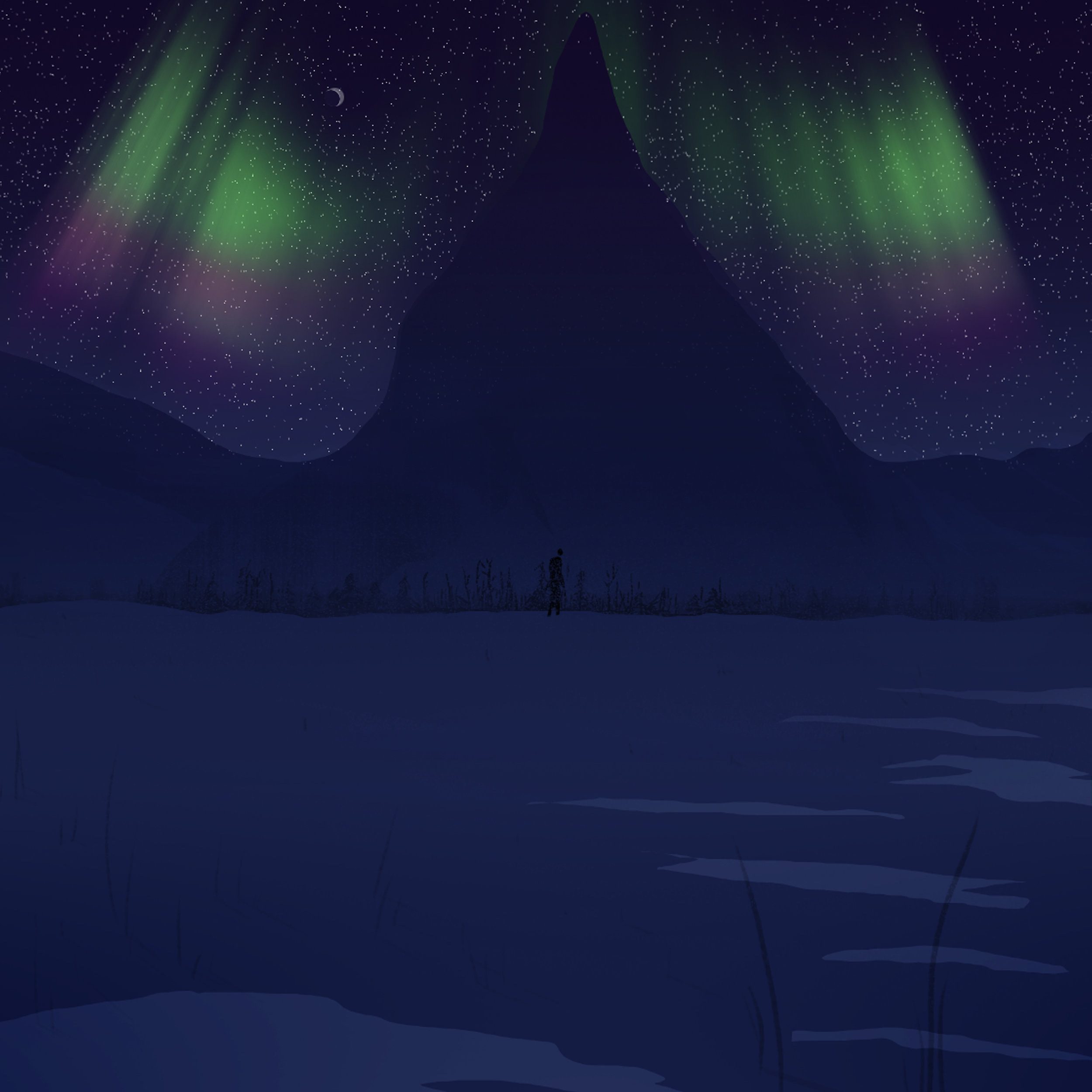 Arctic_03Night.jpg