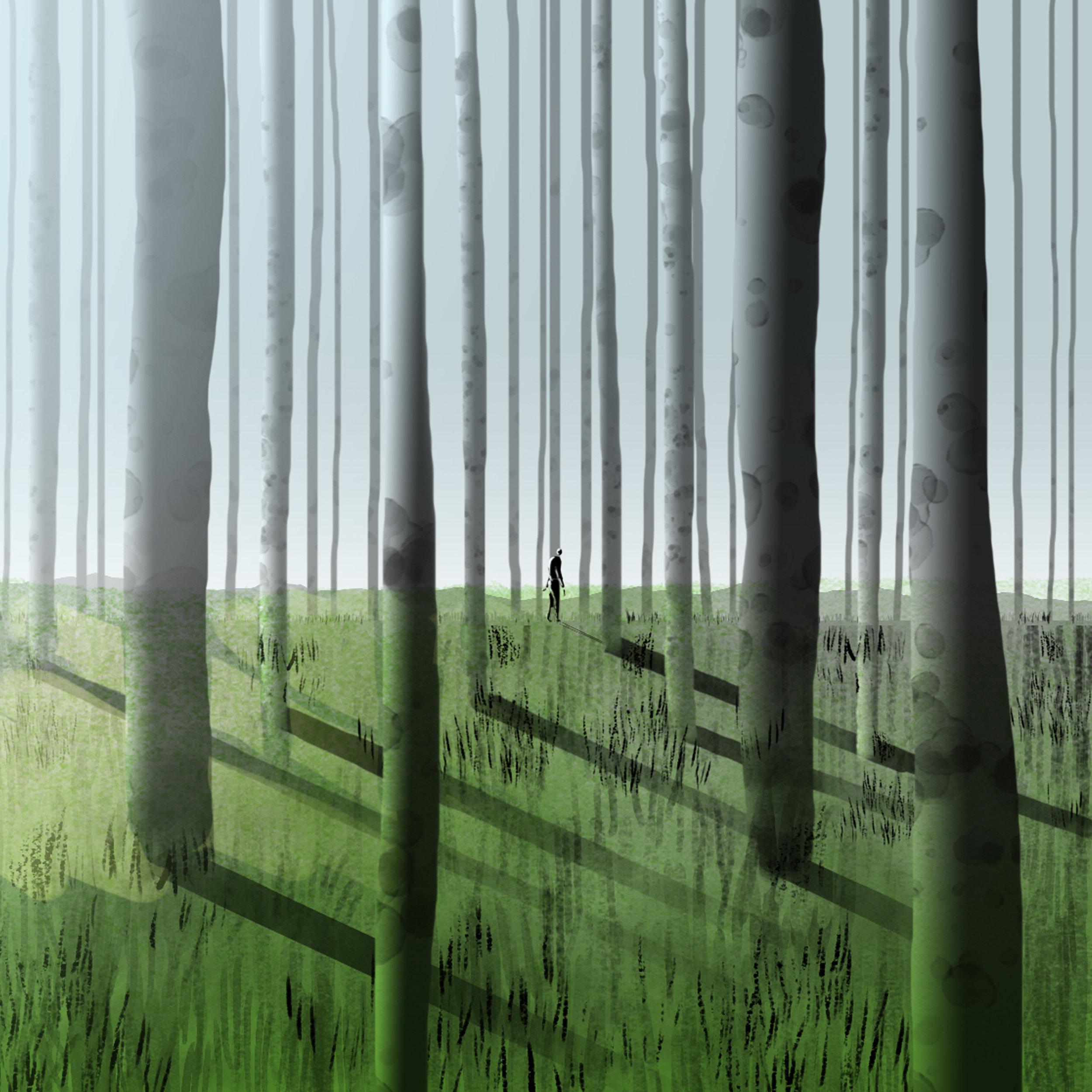 Forest_02Noon.jpg