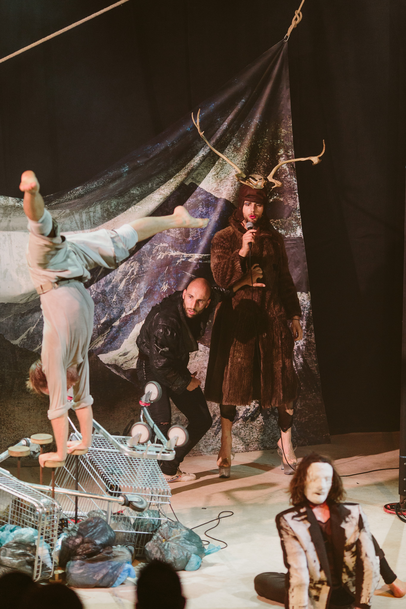 All Genius, All Idiot by Svalbard Co at the Adelaide Fringe Festival March 2016