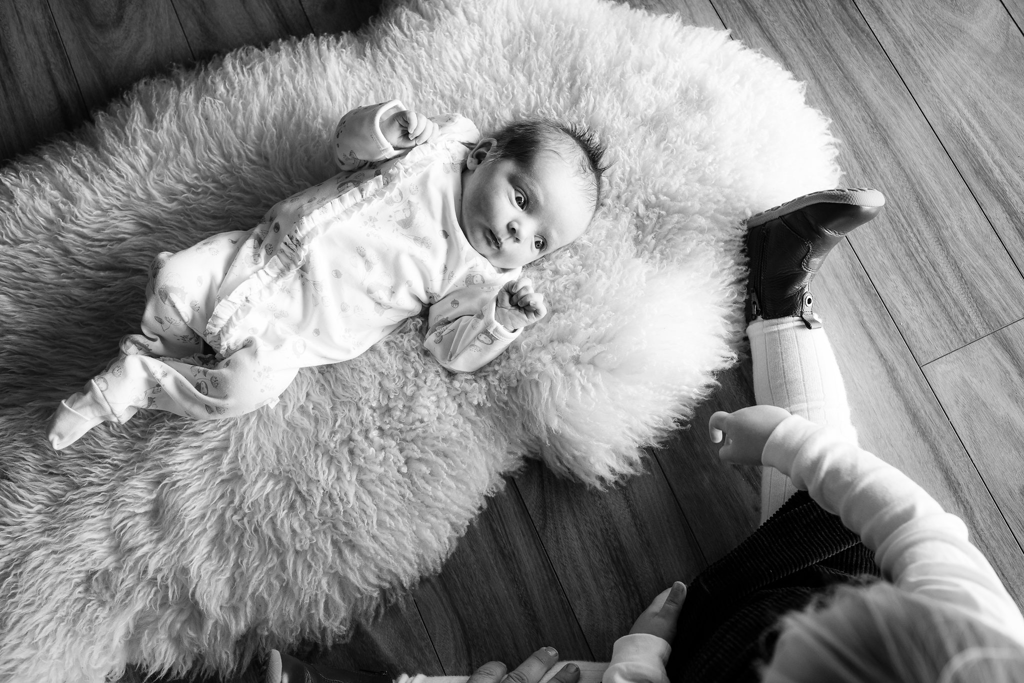adelaide-family-photography-newborn.jpg