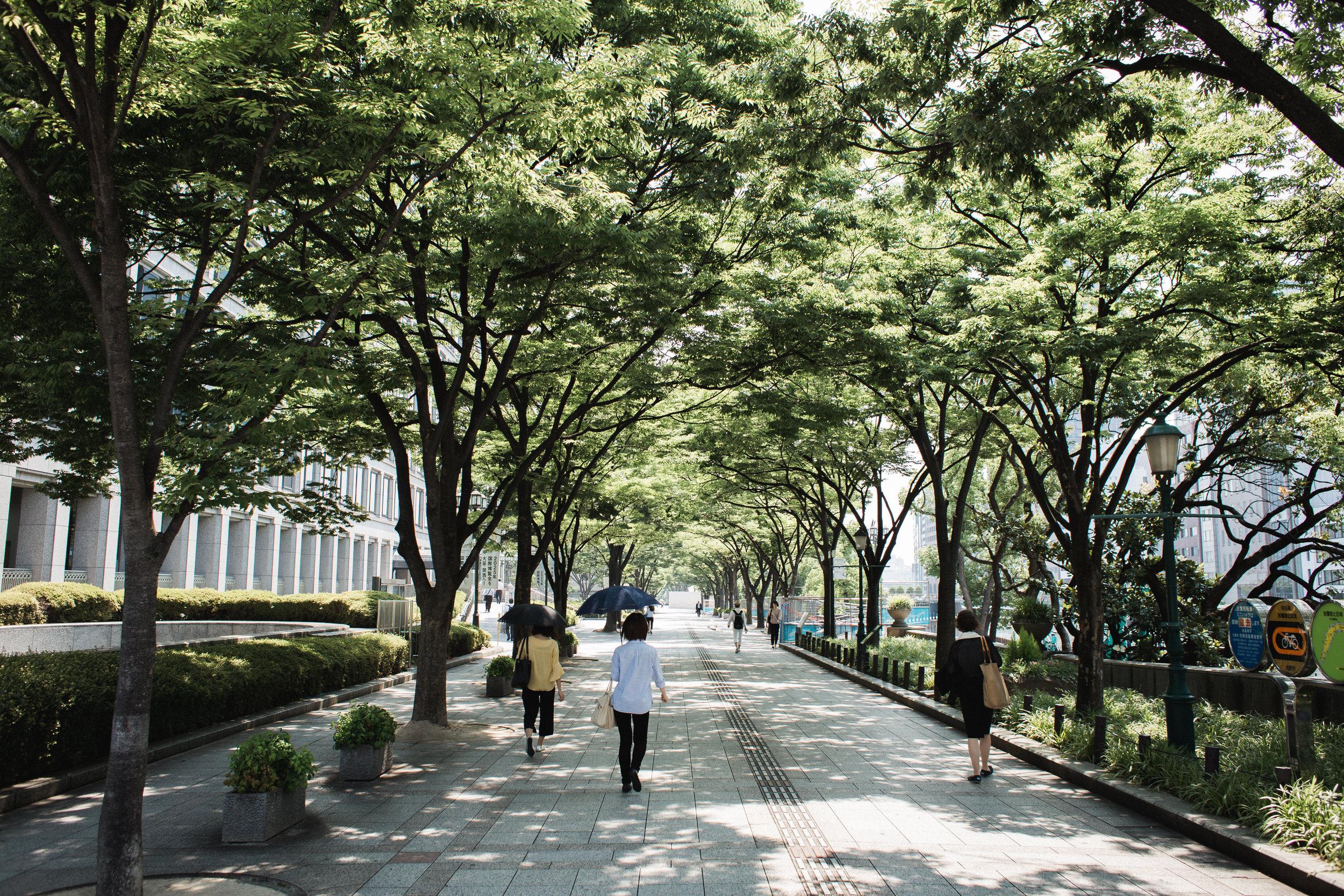 Kansai-10.jpg