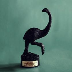 NZ Film Award
