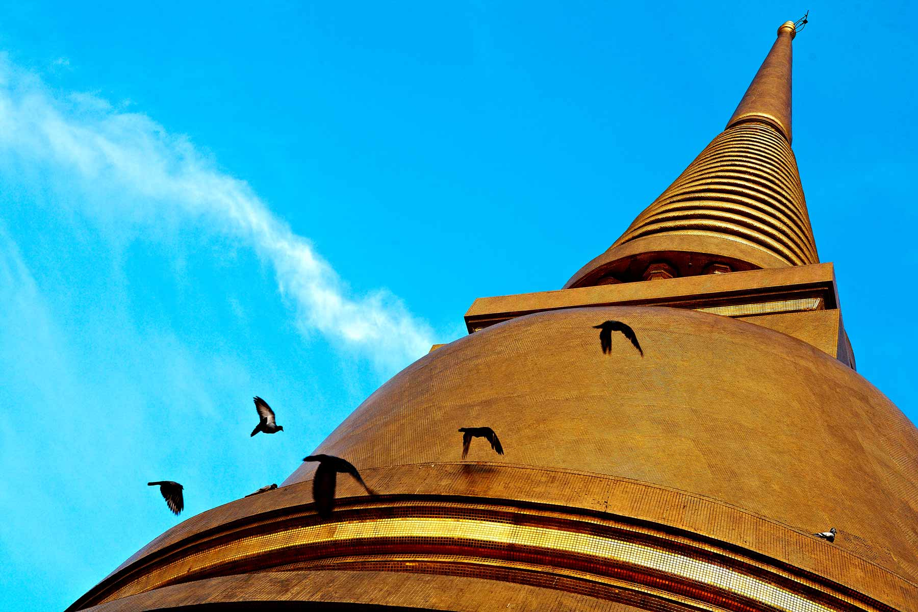 Birds on the roof of the temple