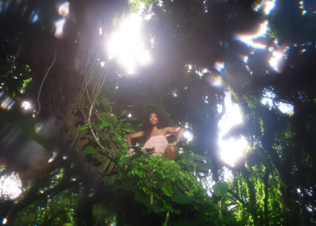 Watch SZA's new video Garden (Say It Like Dat) w/Donald Glover // DNAMAG