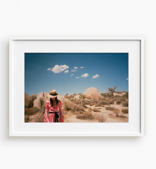 GIA COPPOLA / UNTITLED IV JOSHUA TREE PHOTOGRAPH $250 - available at Tappan