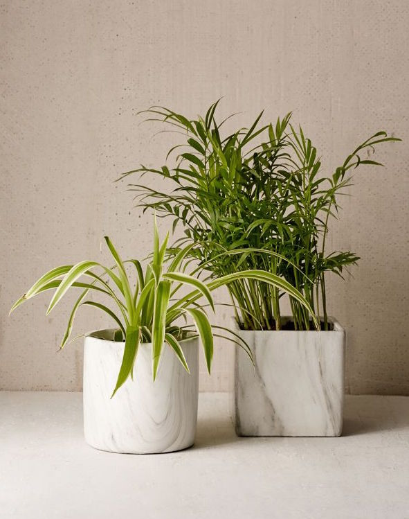 URBAN OUTFITTERS / MARBLE SHAPE PLANTERS $10 - available at Urban Outfitters