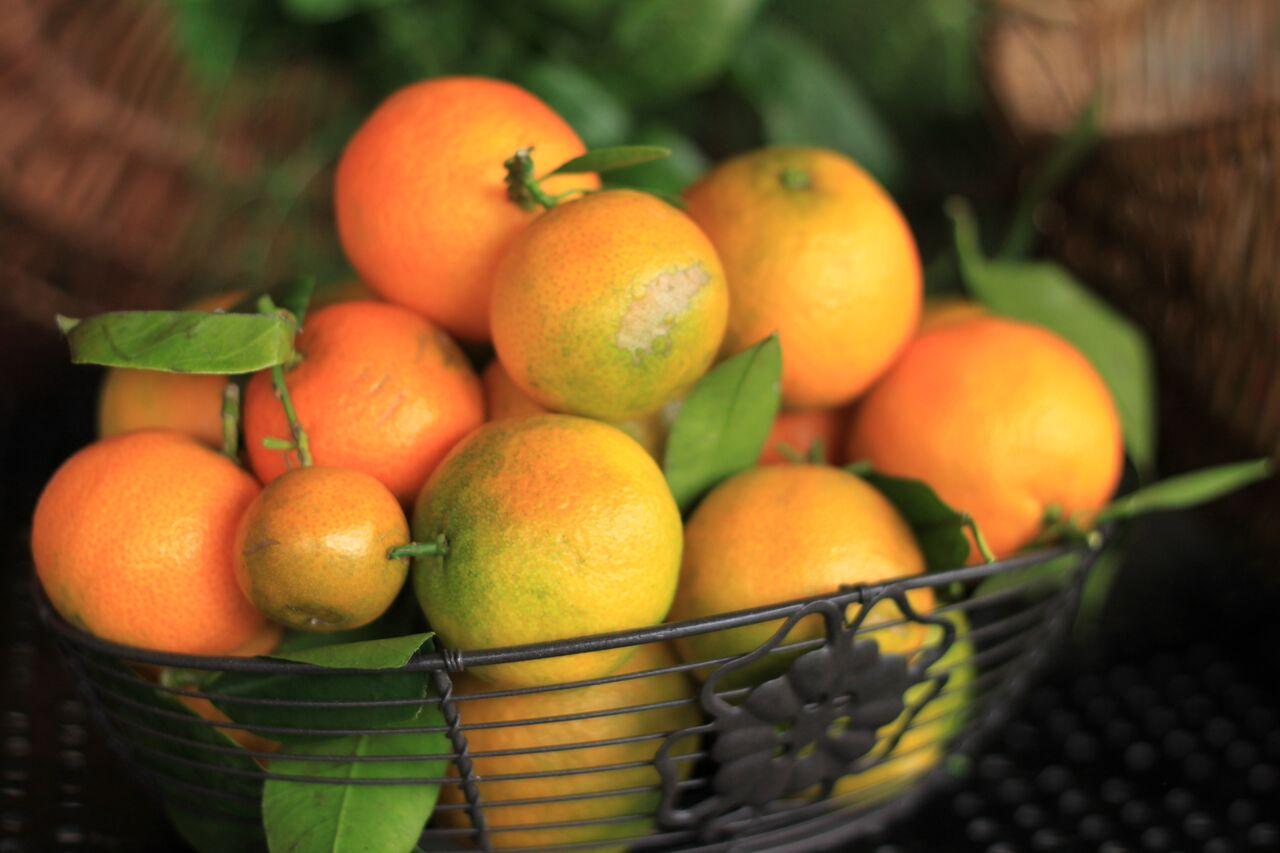 italy-fruits