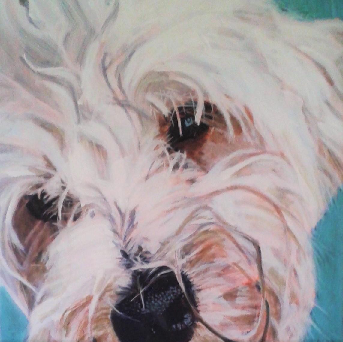 acrylic on canvas  40cm x 40cm