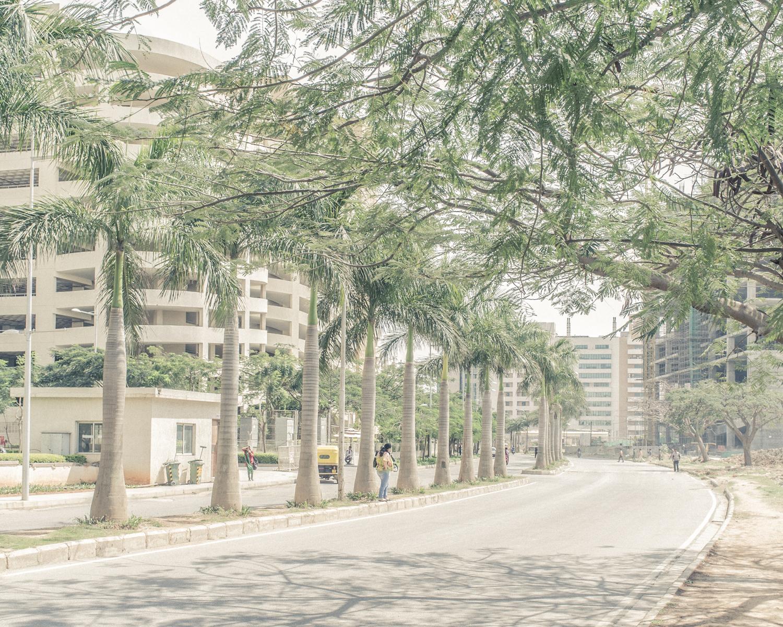 bangalore-thomas-van-den-driessche-3531.jpg