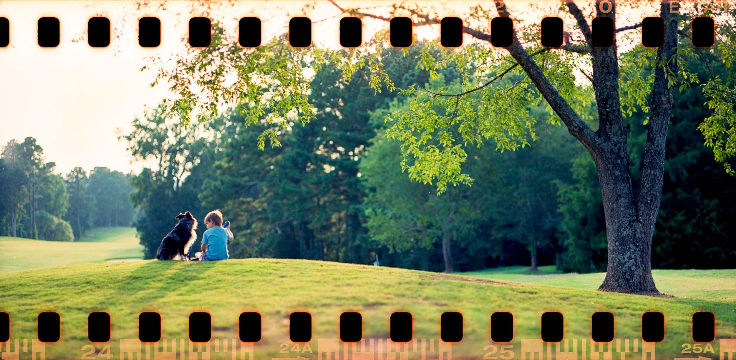 Man's Best Friend Pentax 67 35mm panorama