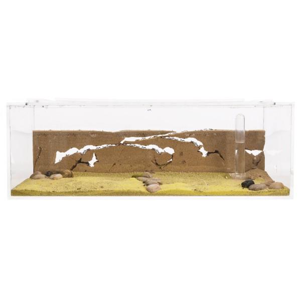 anthouse-acrylic-big-starter-kit.jpg