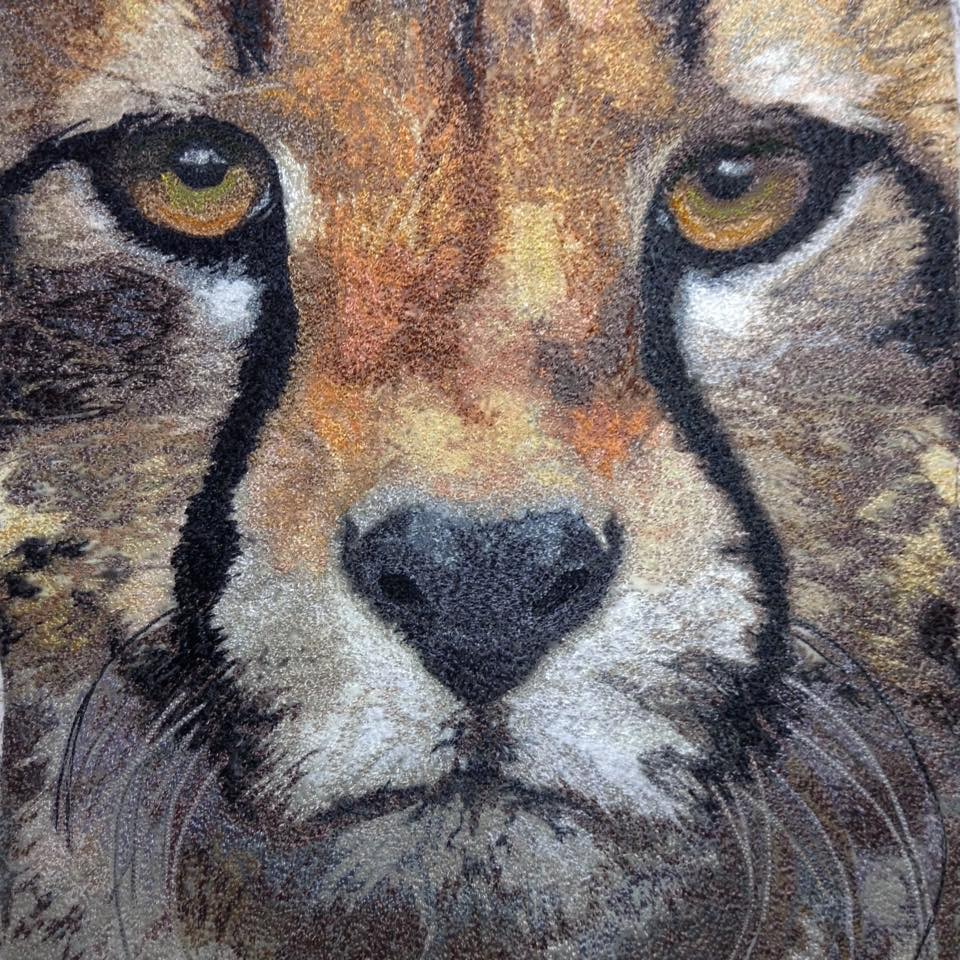 Cheeta, photo by unknown