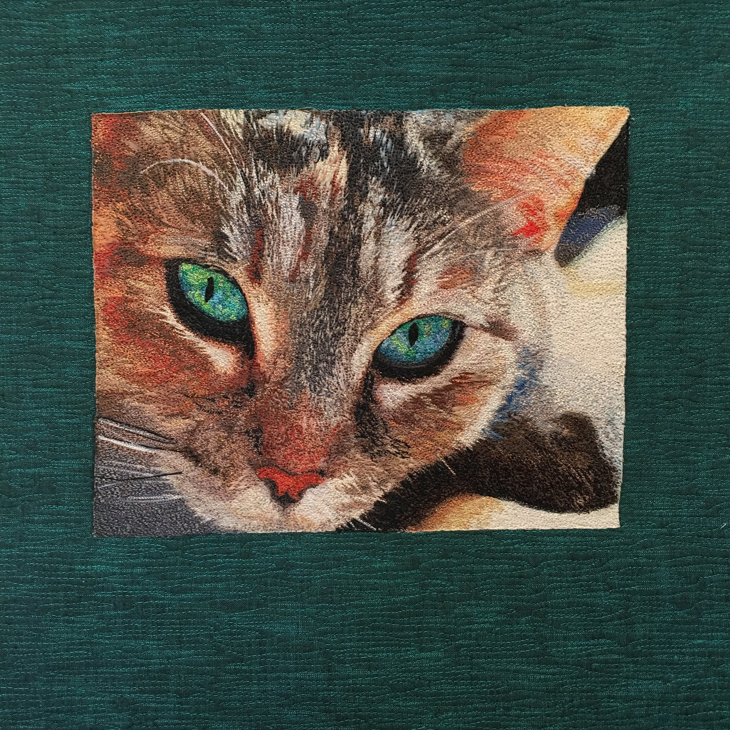 Using a stock photo (photographer unknown), Sandra decided to practice on a beautiful house cat. A simple quilted border frames the work.