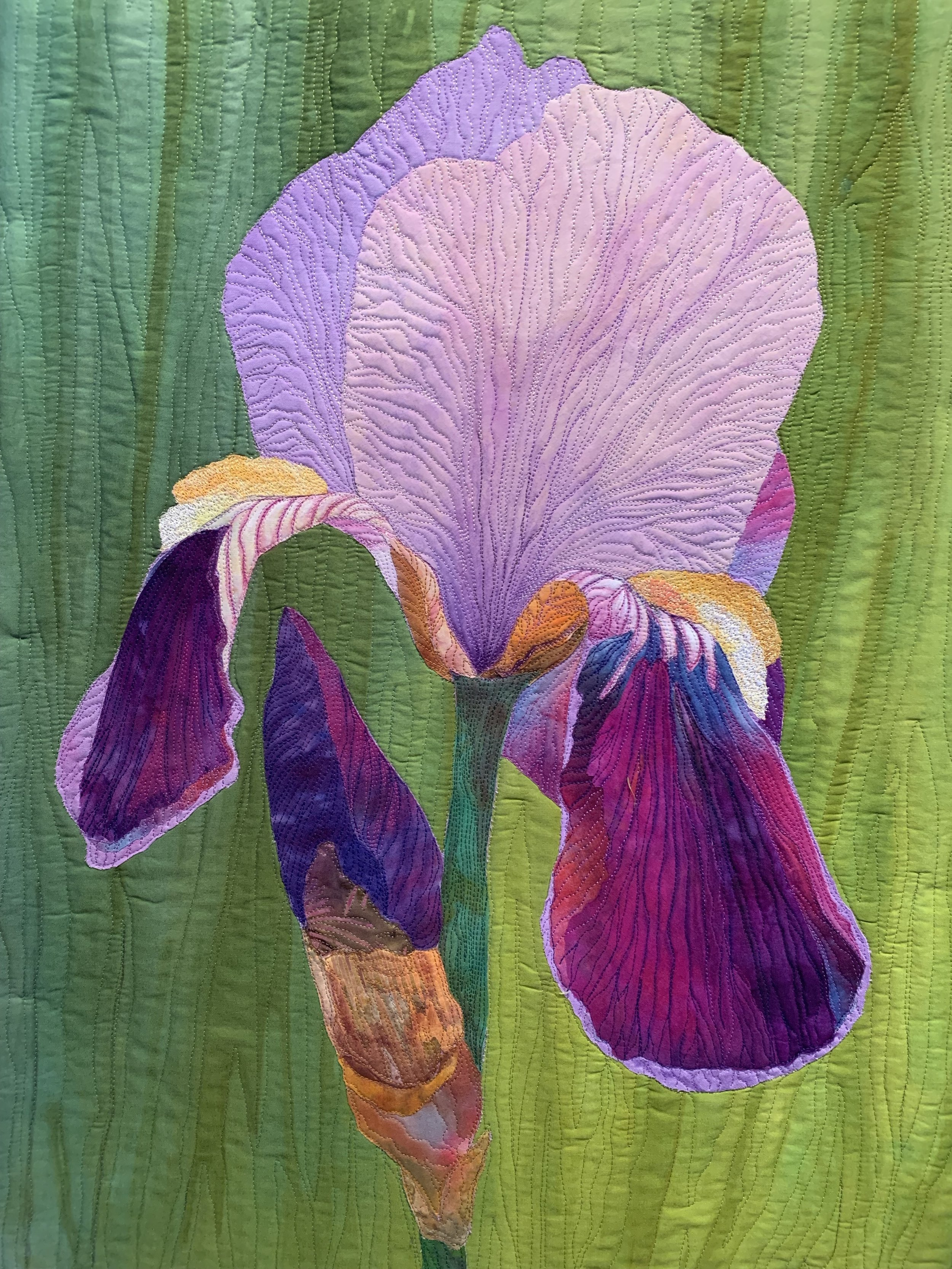 Bearded Iris  - Workshop which adds vibrant inks, including All Purpose Ink and Inktense blocks for realism.