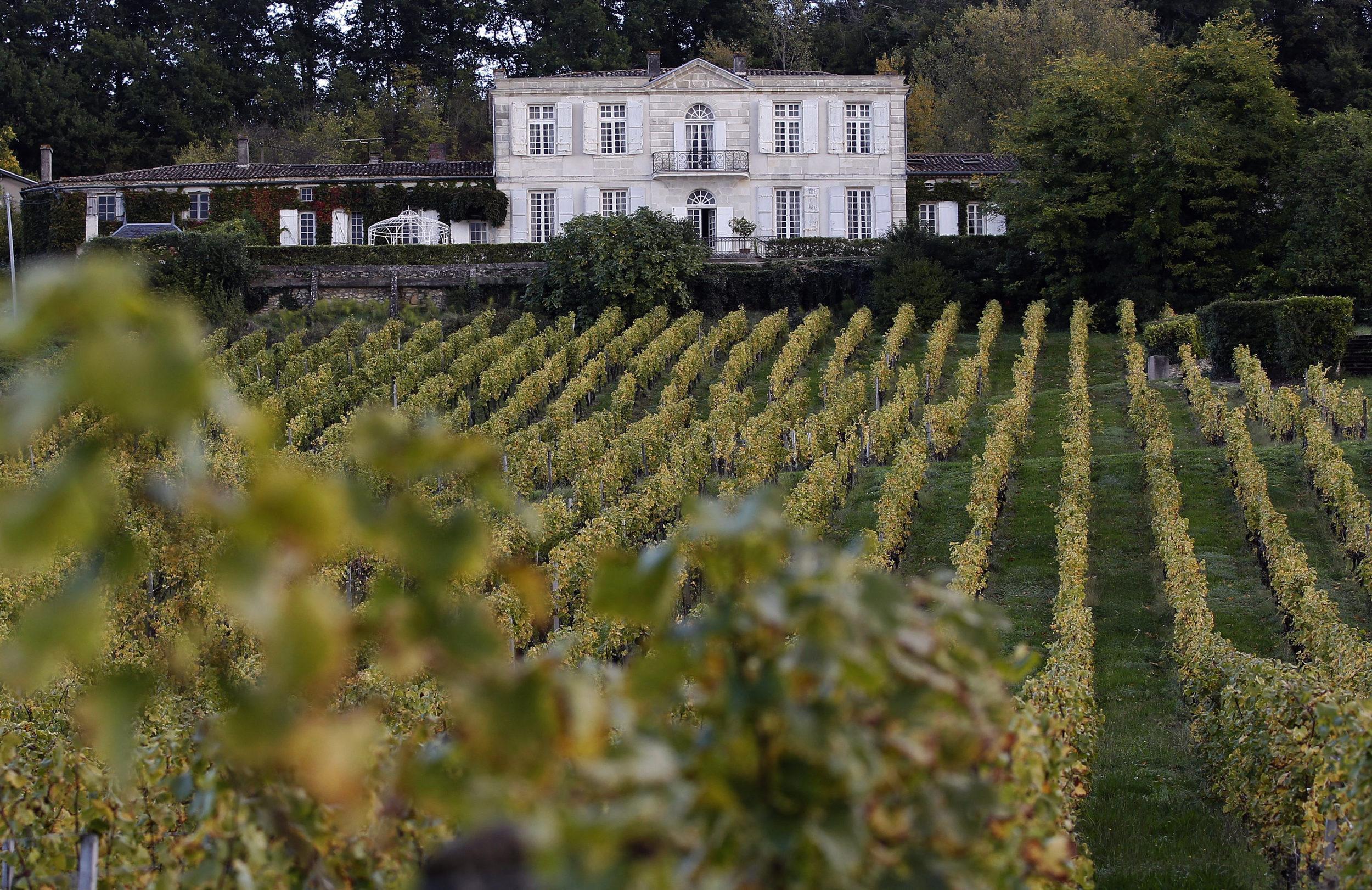 Sainte Croix du Mont - Bordeaux - France