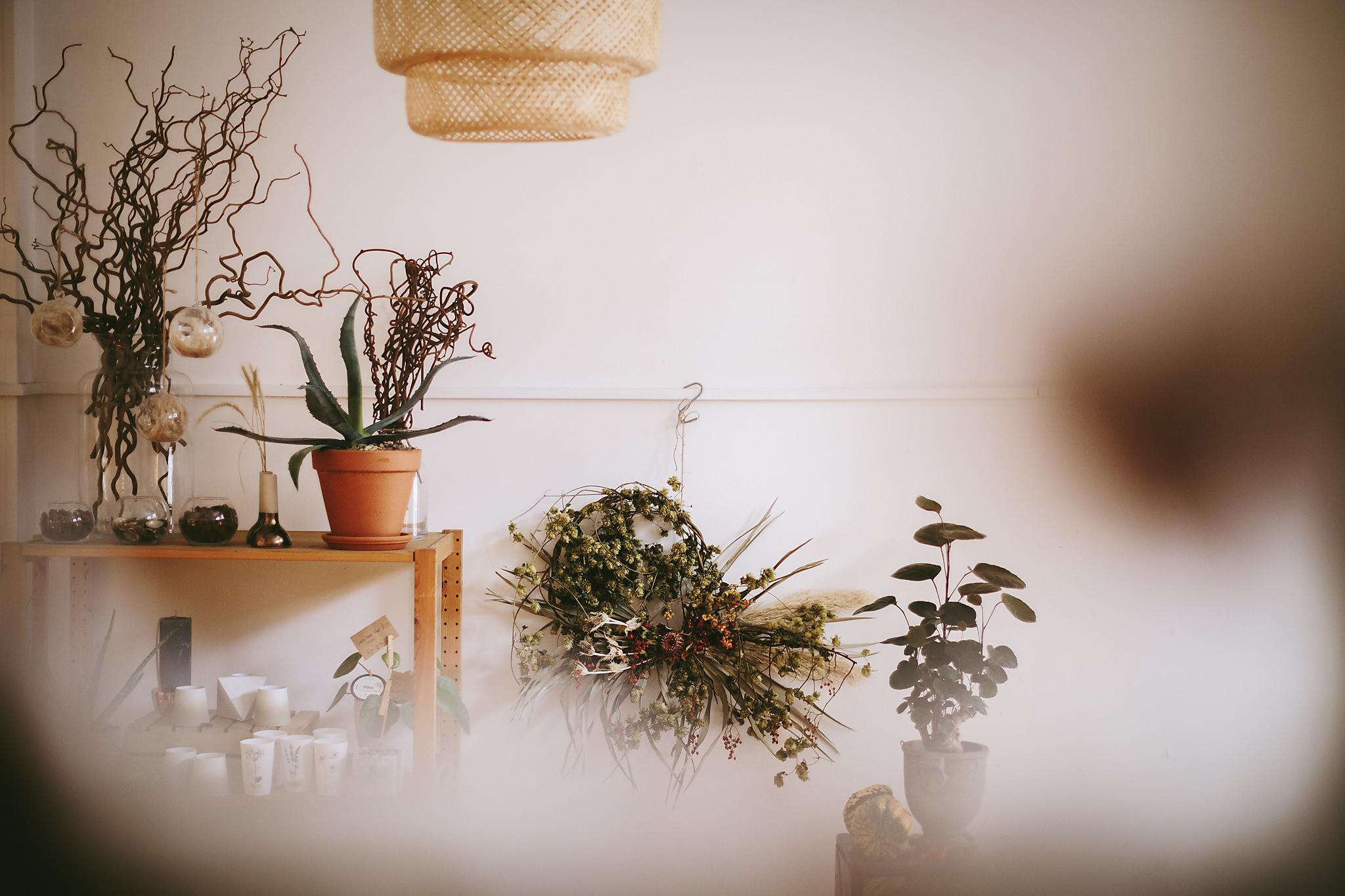 Wildflower_Studio_Oct17-23.jpg