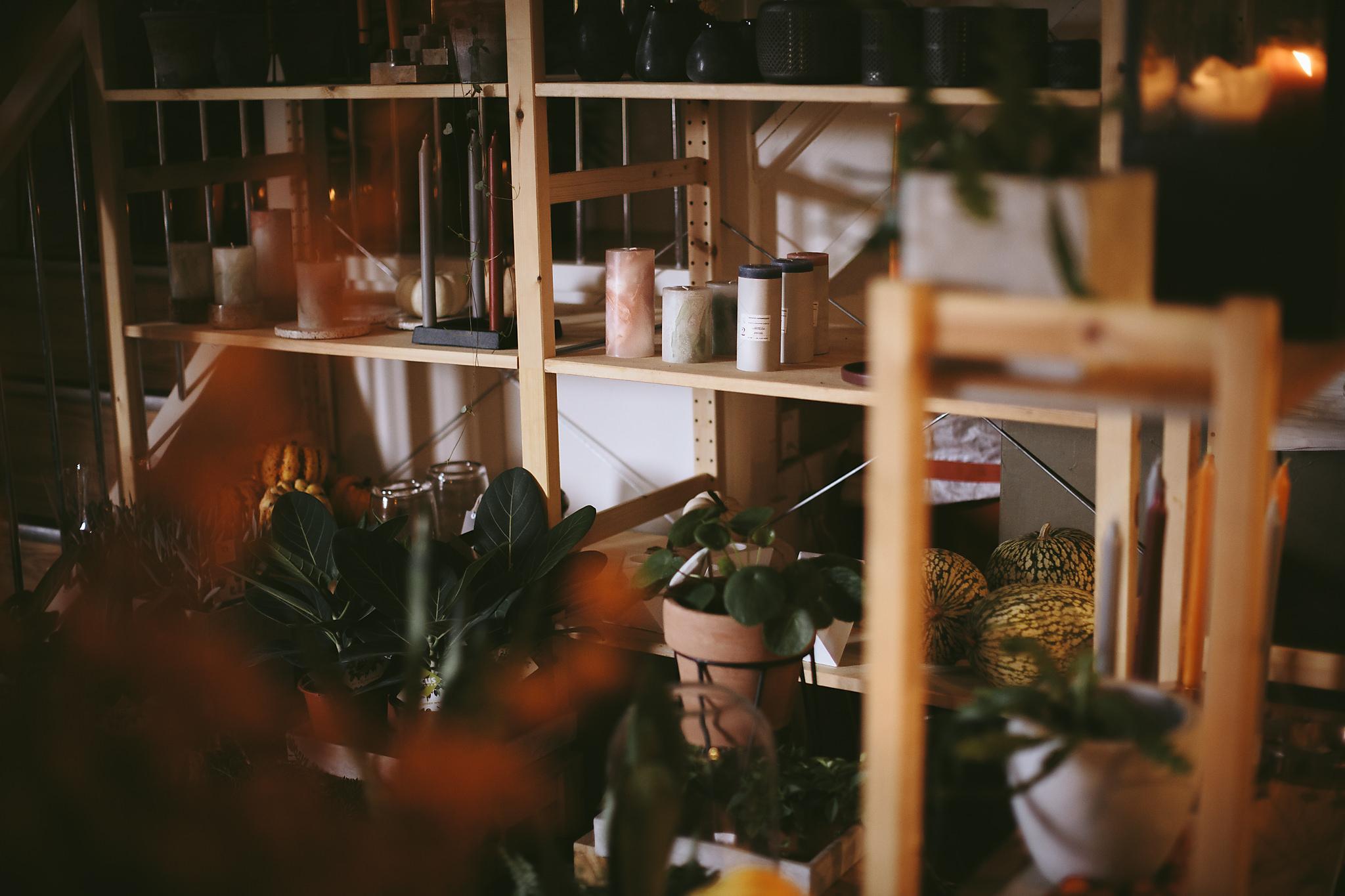 Wildflower_Studio_Oct17-15.jpg