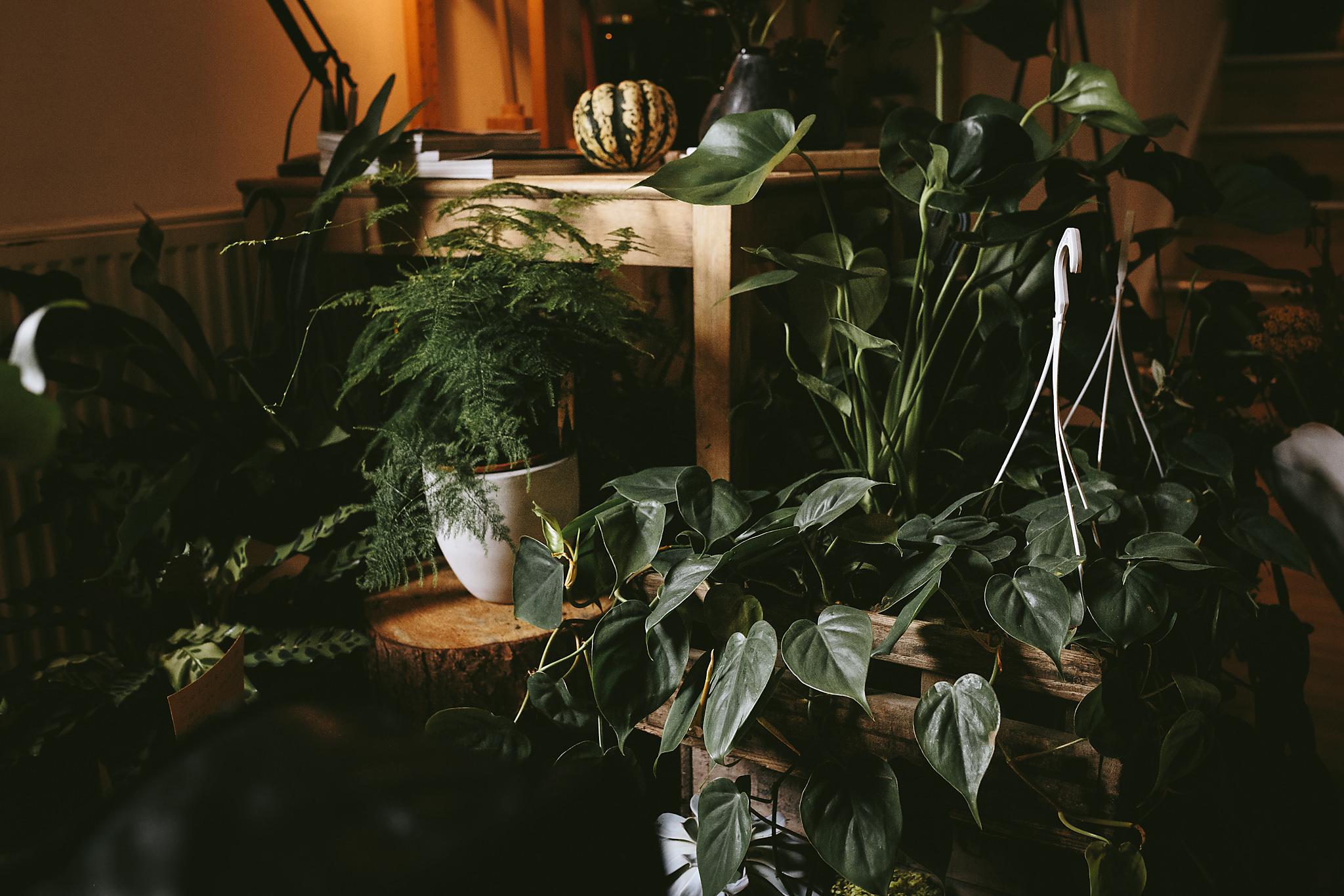 Wildflower_Studio_Oct17-21.jpg
