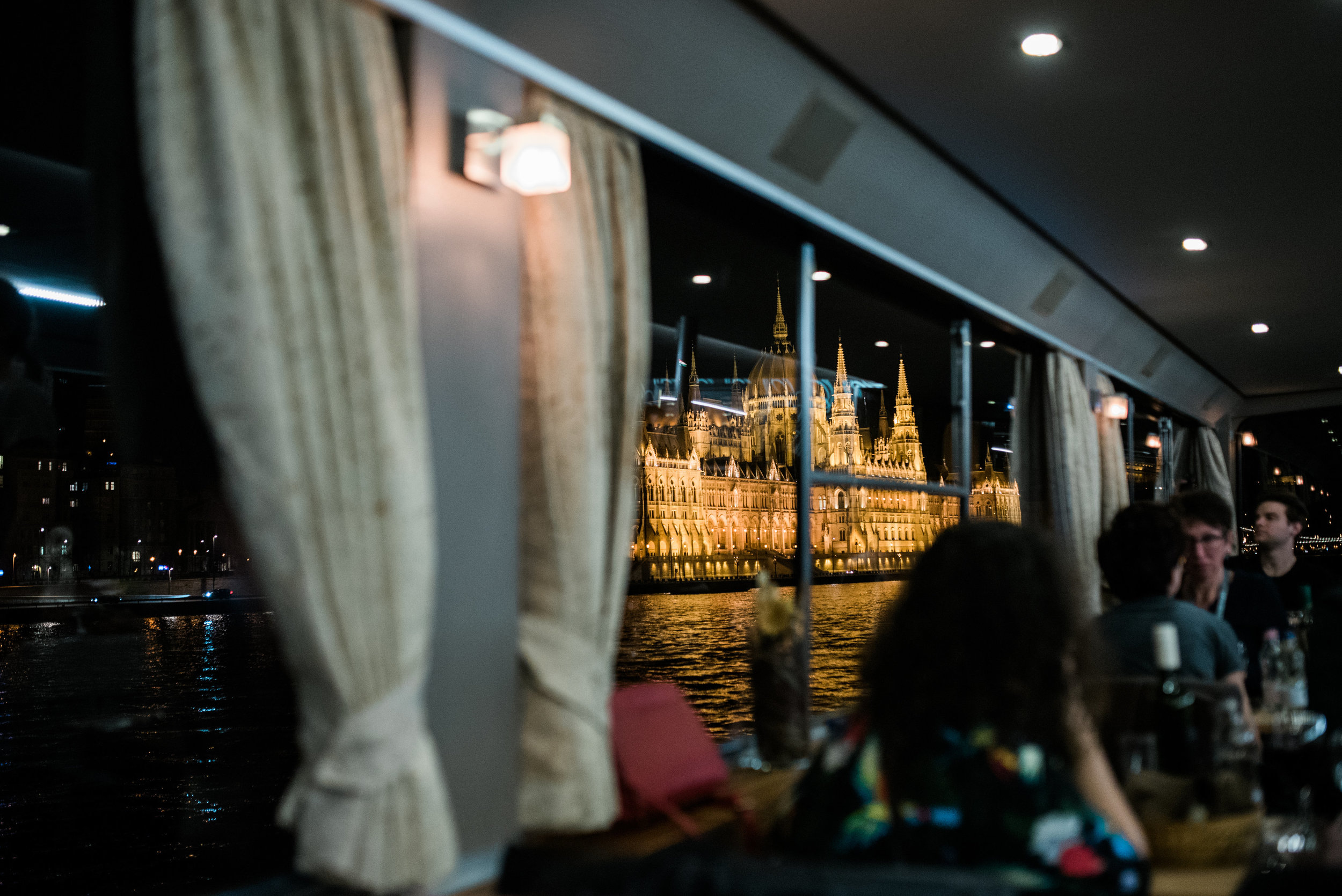 The first night of the conference, we went on a river cruise on the Danube.