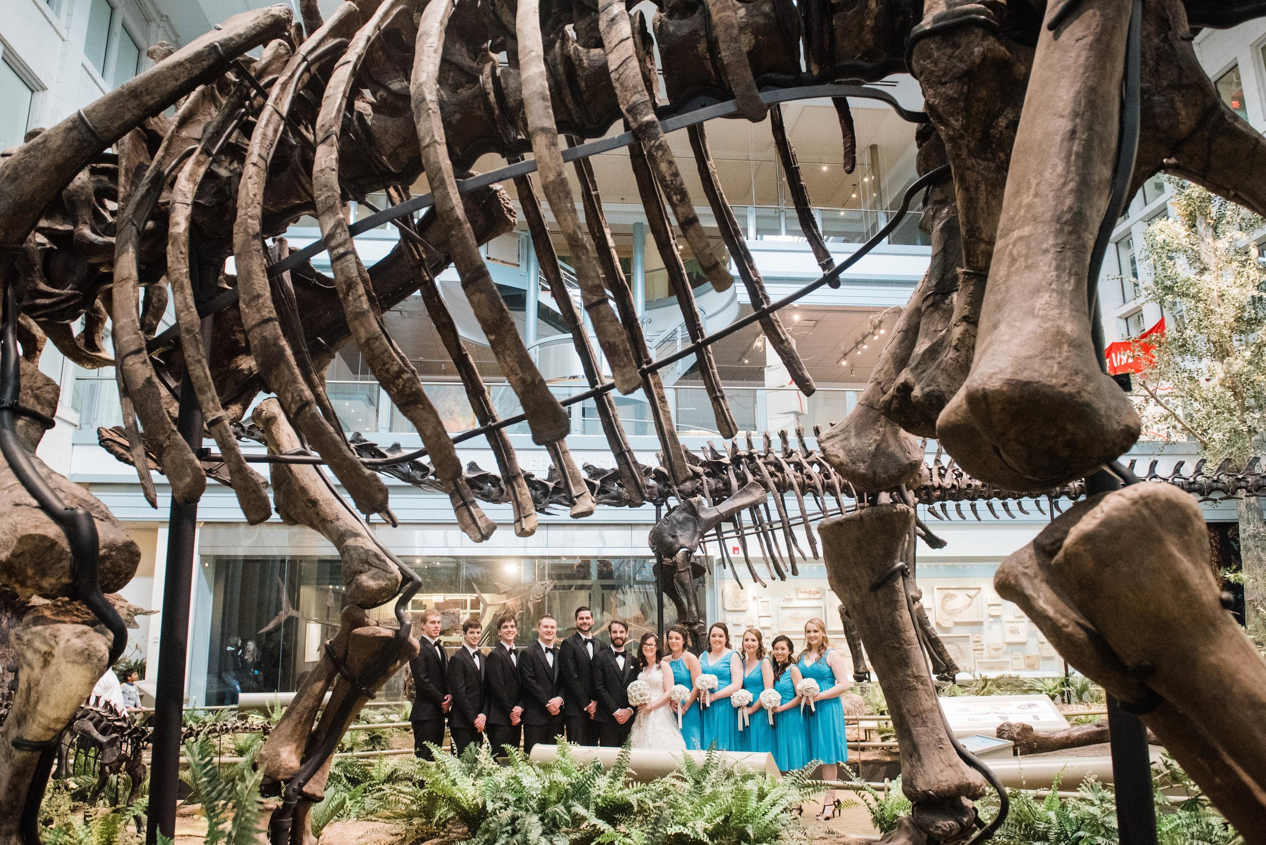 carnegie museum of natural history pittsburgh photographer