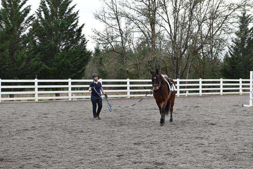 Rebekah working with Jessie's morgan, Sport