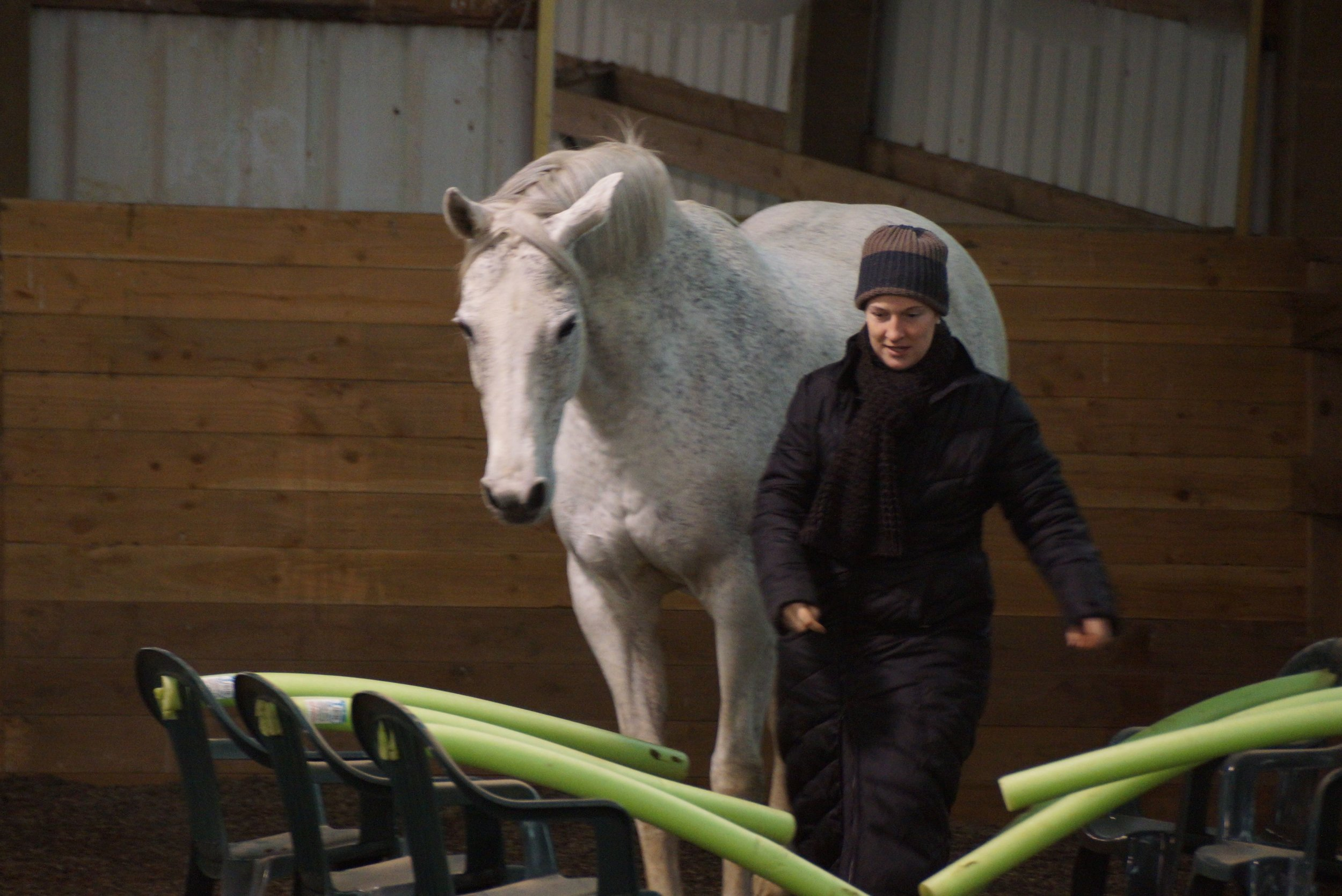 January 2013 Versatility Obstacle Clinic 075.jpg