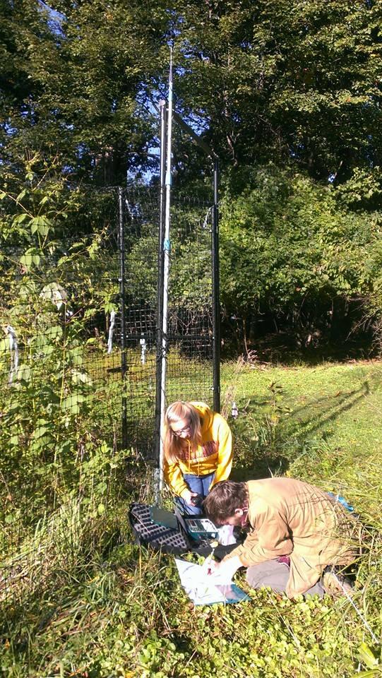 Students setting detectors.jpg