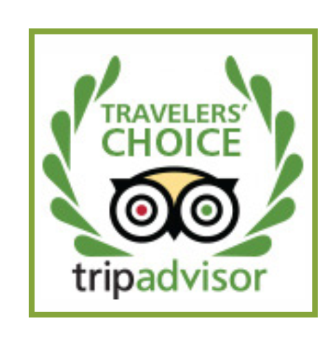 webawards_tripadvisor.png