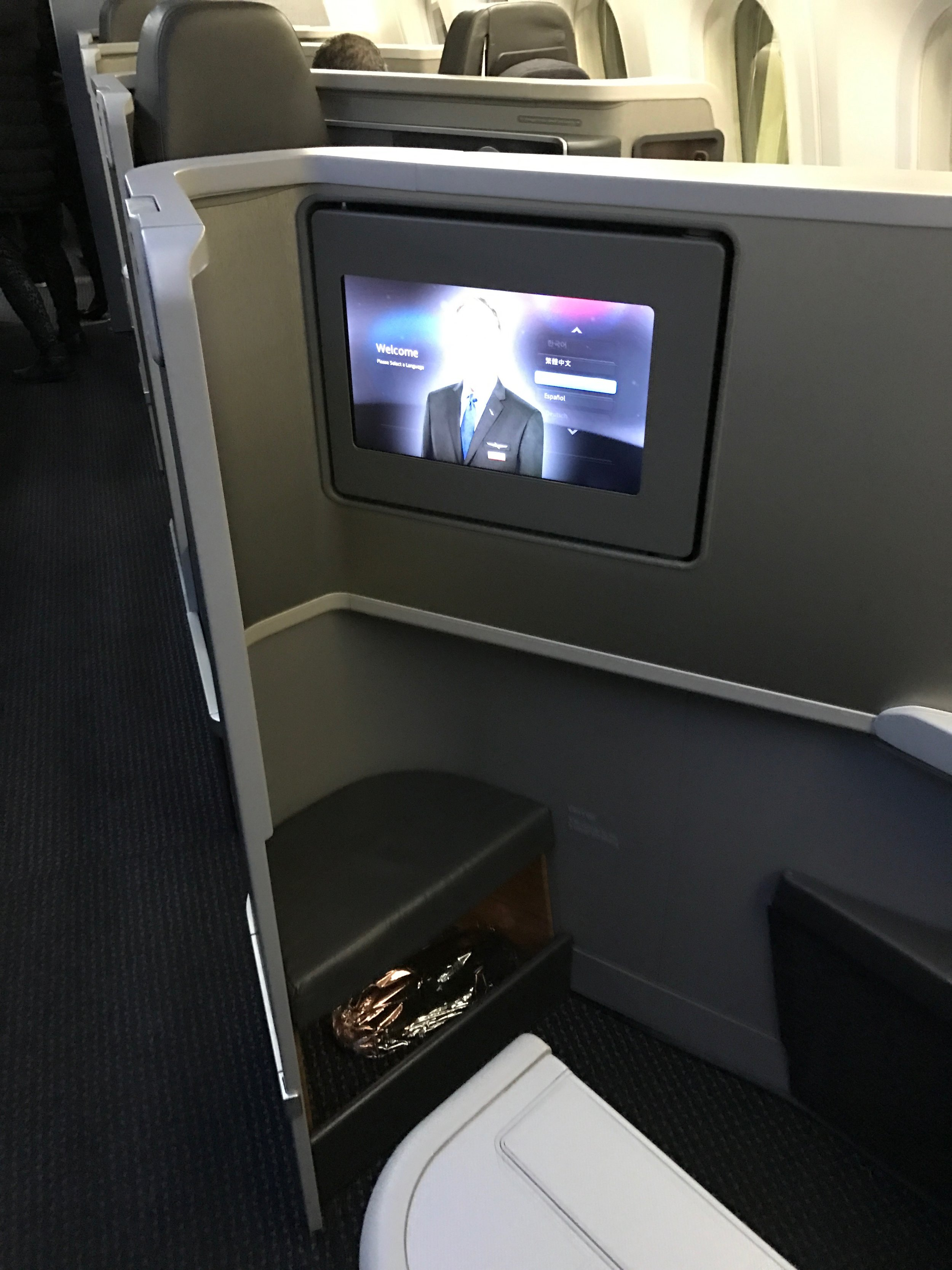 AA 787 Dreamliner Business Class rear-facing seat footrest and monitor