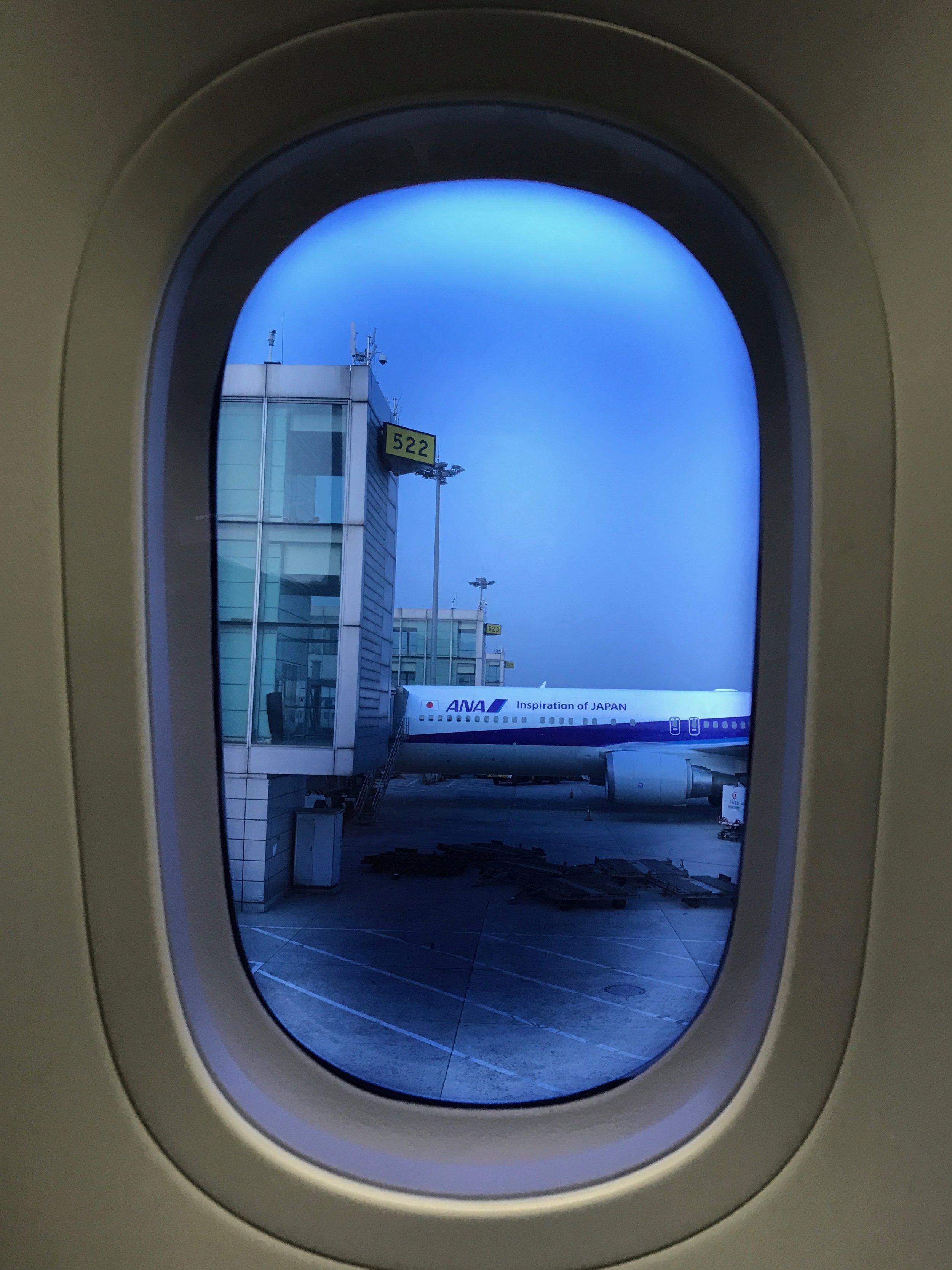 Dreamliner dimmed window