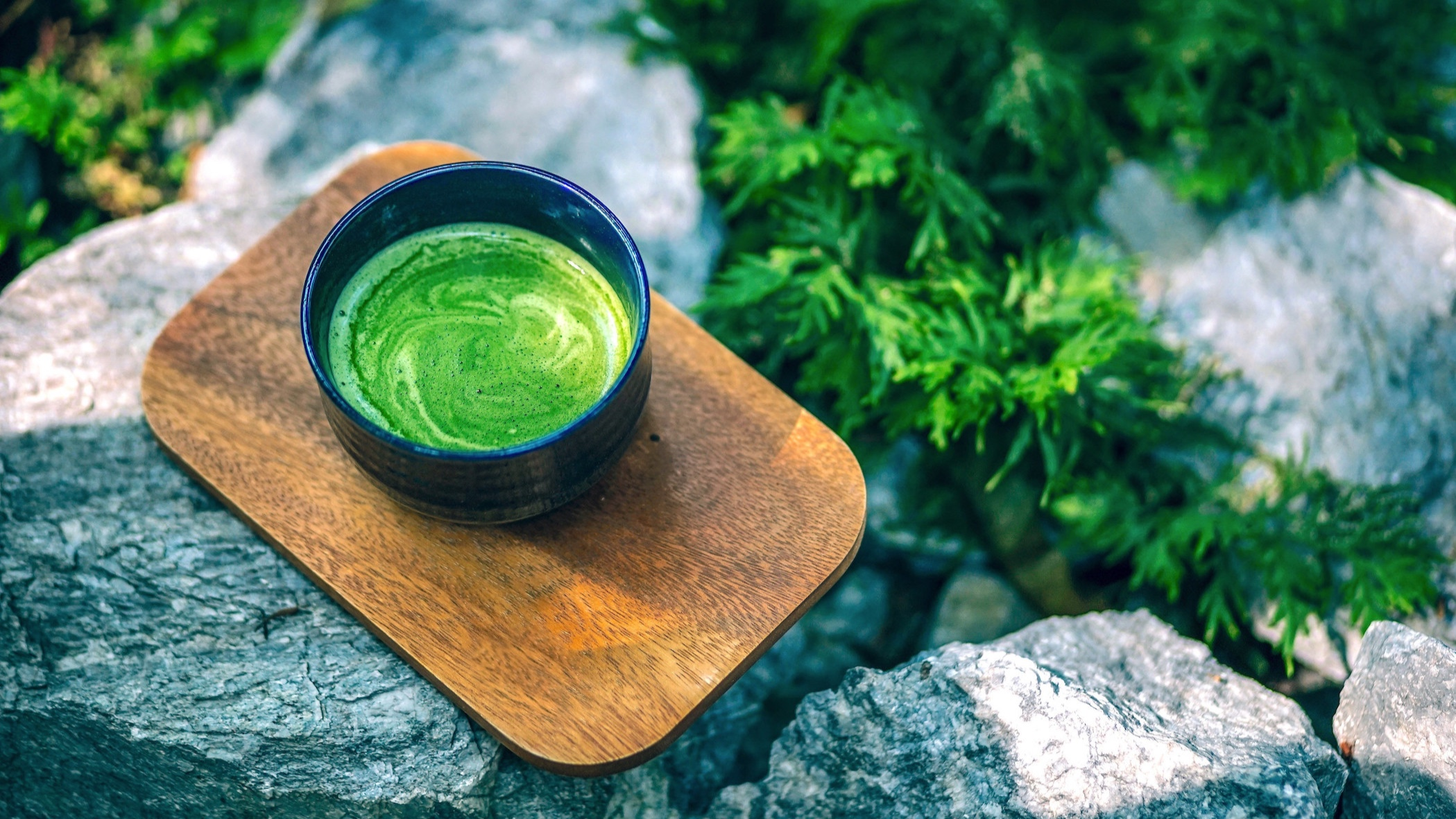 matcha+brewed+in+cup+on+rocks+in+forest+2.jpg