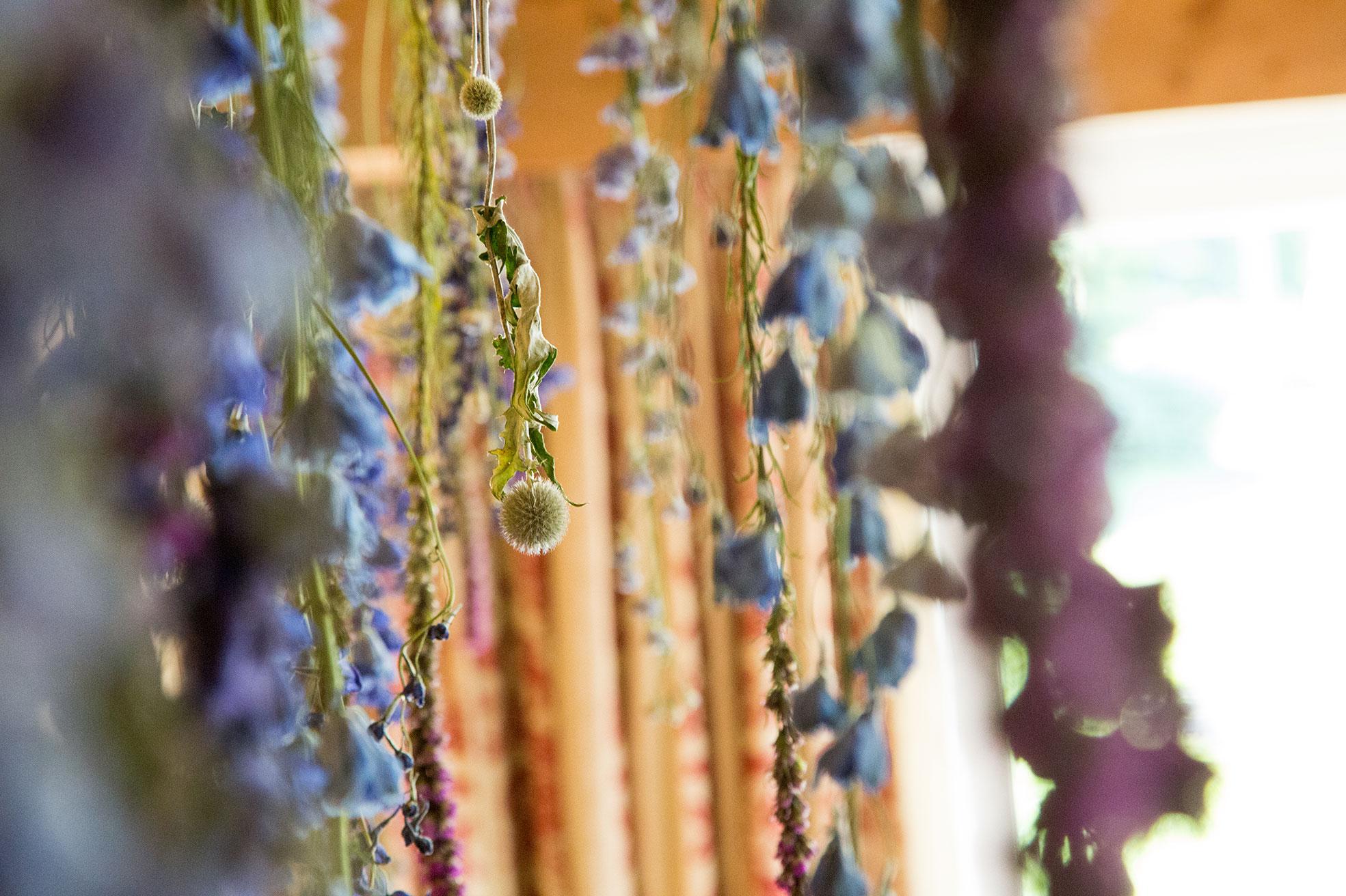 lejdastaz-restorant-trockenblumen.jpg